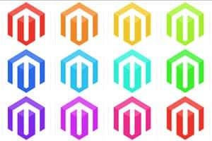 Link Naar Blog Artikel Magento Webshop Laten Bouwen