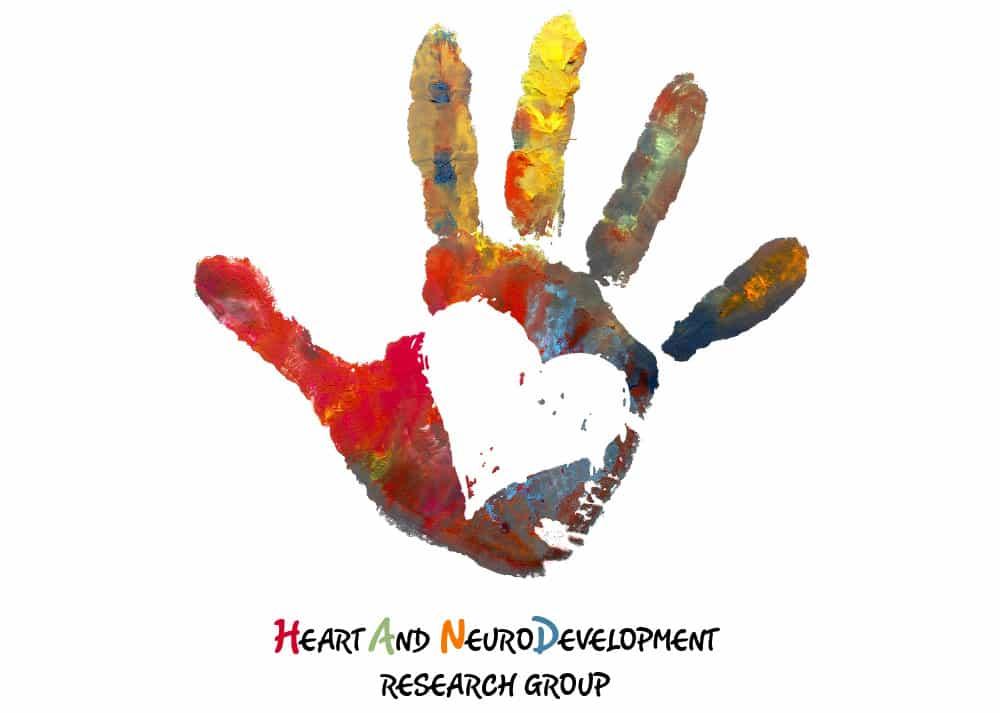 <h3>Logo HAND Study</h3><br/>HAND staat voor The Heart And NeuroDevelopment Study: Development of the brain in fetuses and children with congenital heart disease. Oftewel: wat zijn de gevolgen van hartafwijkingen op de hersenontwikkeling bij ongeborenen en knderen? Een ingewikkeld concept dat vertaald moest worden naar een eenvoudig en herkenbaar beeld: de geverfde kinderhand beeldt de hand uit, en het feit dat het onderzoek zich op kinderen richt. De hand om het hart beeldt het overkoepelende concept uit. Het hart in de kinderhand het kinderhart. <br/>Klik <a href='http://borishoekmeijer.nl/ontwerp-logo-hand-study/' title='link naar portfolio artikel logo HAND' target='_blank'>hier</a> voor meer over dit logo.